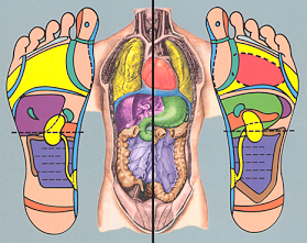 calgary reflexology